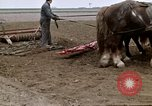 Image of Farmer with horses and mules plows field New York United States USA, 1970, second 47 stock footage video 65675040536