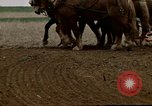 Image of Farmer with horses and mules plows field New York United States USA, 1970, second 48 stock footage video 65675040536