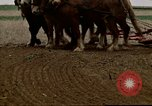 Image of Farmer with horses and mules plows field New York United States USA, 1970, second 49 stock footage video 65675040536