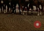 Image of Farmer with horses and mules plows field New York United States USA, 1970, second 51 stock footage video 65675040536