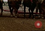 Image of Farmer with horses and mules plows field New York United States USA, 1970, second 53 stock footage video 65675040536