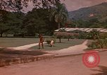 Image of greenhouse Kingston Jamaica, 1972, second 11 stock footage video 65675040555