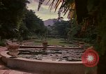 Image of greenhouse Kingston Jamaica, 1972, second 18 stock footage video 65675040555