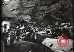 Image of Swiss Village Paris France, 1900, second 32 stock footage video 65675040591