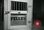 Image of Feller Washington DC USA, 1947, second 20 stock footage video 65675040656
