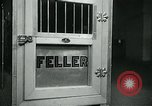 Image of Feller Washington DC USA, 1947, second 21 stock footage video 65675040656