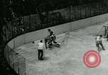 Image of hockey match New York United States USA, 1947, second 53 stock footage video 65675040657