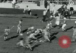 Image of Football match College Park Maryland USA, 1951, second 13 stock footage video 65675040663