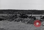 Image of German people Bamberg Germany, 1946, second 19 stock footage video 65675040672