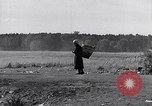 Image of German people Bamberg Germany, 1946, second 47 stock footage video 65675040672