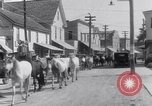 Image of Horse buyers Chincoteague Island Virginia USA, 1931, second 41 stock footage video 65675040715