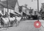 Image of Horse buyers Chincoteague Island Virginia USA, 1931, second 42 stock footage video 65675040715