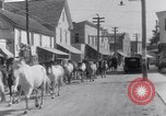Image of Horse buyers Chincoteague Island Virginia USA, 1931, second 43 stock footage video 65675040715