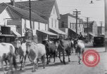 Image of Horse buyers Chincoteague Island Virginia USA, 1931, second 46 stock footage video 65675040715