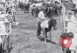 Image of Horse buyers Chincoteague Island Virginia USA, 1931, second 53 stock footage video 65675040715