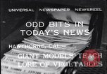 Image of Giant models of vegetables Hawthorne California USA, 1932, second 1 stock footage video 65675040751