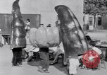 Image of Giant models of vegetables Hawthorne California USA, 1932, second 50 stock footage video 65675040751