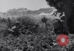 Image of Liberation of Rome Italy, 1944, second 7 stock footage video 65675040759