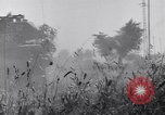 Image of Liberation of Rome Italy, 1944, second 38 stock footage video 65675040759