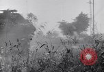 Image of Liberation of Rome Italy, 1944, second 39 stock footage video 65675040759