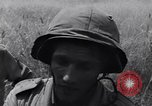 Image of Liberation of Rome Rome Italy, 1944, second 39 stock footage video 65675040760