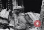 Image of Chinese troops defeat Japan in Battle of Changde Changde China, 1943, second 47 stock footage video 65675040787