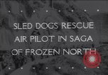 Image of Dog sled team rescues pilot United States USA, 1944, second 1 stock footage video 65675040790