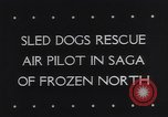 Image of Dog sled team rescues pilot United States USA, 1944, second 6 stock footage video 65675040790