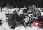 Image of Dog sled team rescues pilot United States USA, 1944, second 14 stock footage video 65675040790