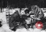 Image of Dog sled team rescues pilot United States USA, 1944, second 15 stock footage video 65675040790