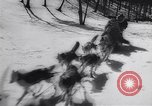 Image of Dog sled team rescues pilot United States USA, 1944, second 22 stock footage video 65675040790