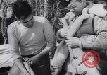 Image of Dog sled team rescues pilot United States USA, 1944, second 36 stock footage video 65675040790