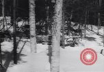 Image of Dog sled team rescues pilot United States USA, 1944, second 46 stock footage video 65675040790