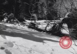 Image of Dog sled team rescues pilot United States USA, 1944, second 49 stock footage video 65675040790