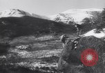 Image of Dog sled team rescues pilot United States USA, 1944, second 54 stock footage video 65675040790