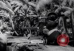 Image of Pacific Islanders in dugout canoes Pacific Theater, 1942, second 56 stock footage video 65675040839
