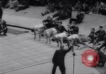 Image of Millrose Games New York United States USA, 1959, second 8 stock footage video 65675040900