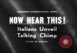Image of chimpanzees Rome Italy, 1962, second 1 stock footage video 65675040906