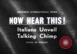 Image of chimpanzees Rome Italy, 1962, second 5 stock footage video 65675040906