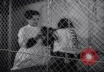 Image of chimpanzees Rome Italy, 1962, second 20 stock footage video 65675040906