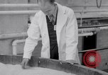 Image of Buna Rubber United States USA, 1942, second 21 stock footage video 65675040909