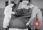 Image of Buna Rubber United States USA, 1942, second 42 stock footage video 65675040909