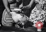 Image of chicken beauty pageant Petaluma California USA, 1947, second 27 stock footage video 65675040927