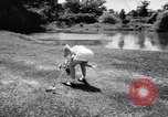 Image of Linda Lewis Long Island New York USA, 1956, second 52 stock footage video 65675040944