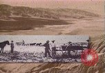 Image of Borax transport by 20 mule teams Death Valley California USA, 1894, second 14 stock footage video 65675040984