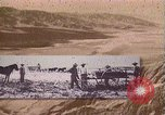Image of Borax transport by 20 mule teams Death Valley California USA, 1894, second 15 stock footage video 65675040984
