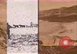 Image of Borax transport by 20 mule teams Death Valley California USA, 1894, second 60 stock footage video 65675040984