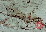 Image of dead Japanese soldiers Eniwetok Atoll Marshall Islands, 1944, second 28 stock footage video 65675041028