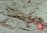 Image of dead Japanese soldiers Eniwetok Atoll Marshall Islands, 1944, second 29 stock footage video 65675041028