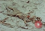 Image of dead Japanese soldiers Eniwetok Atoll Marshall Islands, 1944, second 32 stock footage video 65675041028